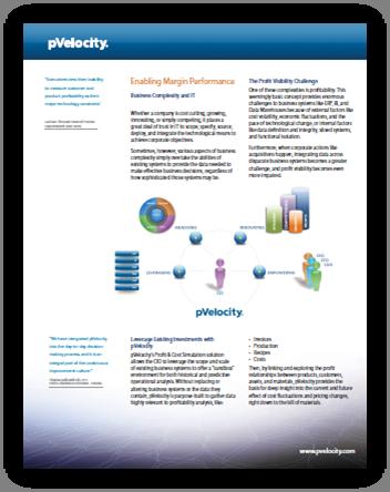 pVelocity CIO Perspective PDF