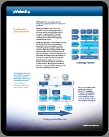pVelocity IT Information PDF